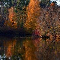 Осень…Таинственная, многоликая и манящая своей красотой! :: Ольга Русанова (olg-rusanowa2010)