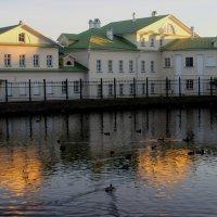 Белый пруд ноябрьским вечером :: Дмитрий Солоненко