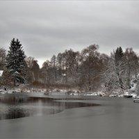 Серые краски ноября :: Вячеслав Маслов