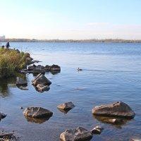 Рыбалка на озере :: Елена Викторова