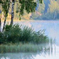 Утро на озере..... :: Юрий Цыплятников