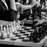 Шахматы :: Татьяна Беляева