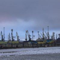 Портовые будни :: Светлана marokkanka