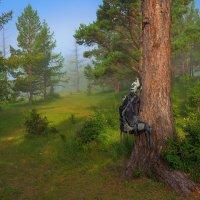 Утренний туман возле нашего лагеря :: Nikolay Svetin