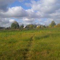 За околицей деревни Воронинская :: Виктор Мухин