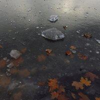 Кажется, зима приближается :: Андрей Лукьянов