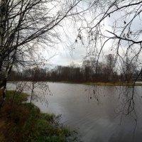Охтинское водохранилище :: Елена Павлова (Смолова)