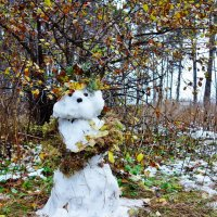 Снегурочка осенняя :: Евгения Корнилкова