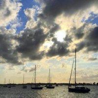 Яхты в Ньюпорте :: Елена