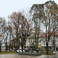 В парке Таммсааре :: veera (veerra)