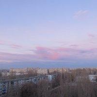нежный вечер :: Елена Шаламова