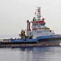 Буксир голландской фирмы DAMEN в порту Анталии :: Nina Karyuk