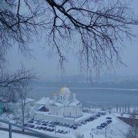 зимний день :: Наталья Сазонова