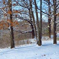 Первый снег после лета. :: vodonos241