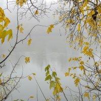 Осенняя мозаика :: Сергей Тарабара