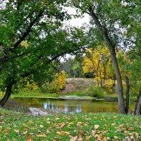 Осень :: Анастасия Науменко