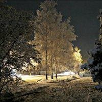 Ноябрьский вечер :: Leonid Rutov