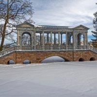 Зимний парк :: Евгений Васин