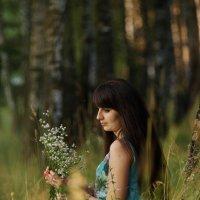 Ах, ромашки, милые цветочки... :: Anatol S