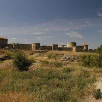 крепость Ак-Керман :: esadesign Егерев