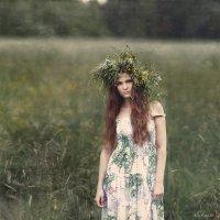 Summer :: Kir Kabe