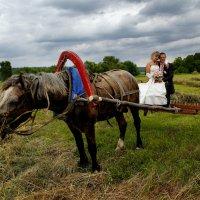 на лошади :: владимир васильев