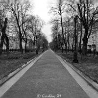 Аллея :: Grishkov S.M.