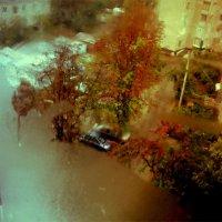 Осень :: Дарья Сергиенко
