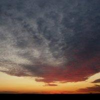 Осеннеё небо :: Дарья Сергиенко