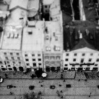 С высоты :: Виктория Павлюк
