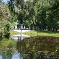 Старый пруд :: Татьяна Полева