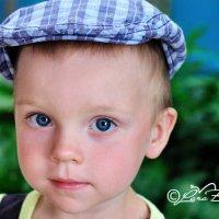 Малыш в кепке :: Лариса Булавка