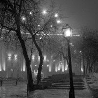 In the night :: Alex White