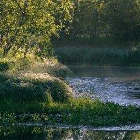 дышит свежестью летнее утро... :: Татьяна .