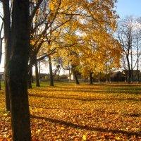 Золотая осень :: Мария Мазурова