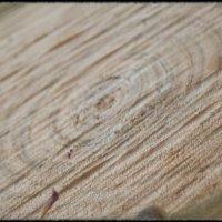 Деревянные колечки :: Yana Fizazi