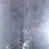 Дождь :: Ксения Меньшина