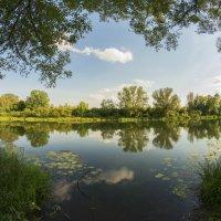 Красивое место на реке :: Дмитрий Симонов