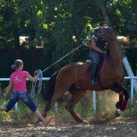 Коня на скаку остановит.... :: Светлана Яковлева