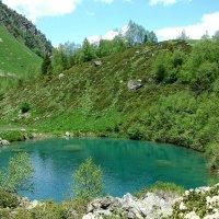 Озеро Запятая :: Светлана Попова