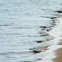 Река и волны :: Алёна Бакерина