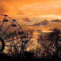 старый парк на закате :: Виктория Сокур
