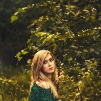 лес :: Алёна Дягелева