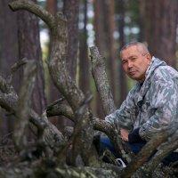 Встреча в лесу. :: Алексей Хаустов