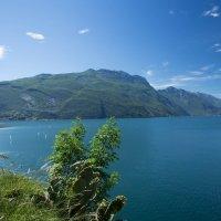 Озеро Гарда :: Татьяна Чермашенцева(Сhe)