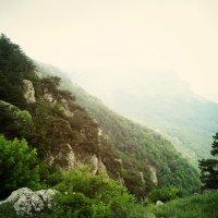 Крымские горы. :: Настя Щегуло