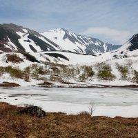 Камчатский пейзаж в июле на высоте 400м :: Геннадий Мельников