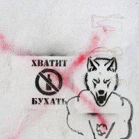 ХВАТИТ БУХАТЬ :: Александр Титов
