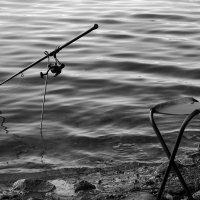 Рыбалка :: Ирина