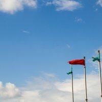 Летний день, мирное небо в городе :: Йеннифэр Шурсен